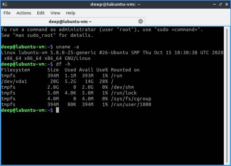 Lubuntu Disk Usage DF Output