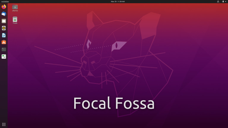 Falling Into a Focal Fossa Frenzy