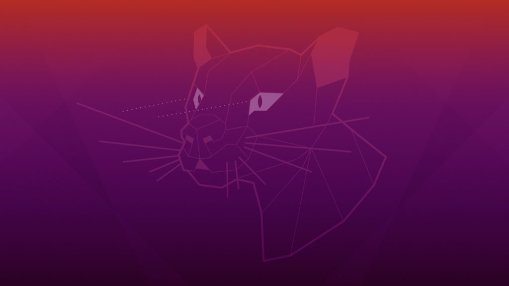 Focal Fossa Wallpaper / Desktop Background